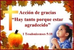 Dia de accion de gracias 2013