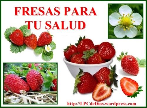 Fresas PCDWS