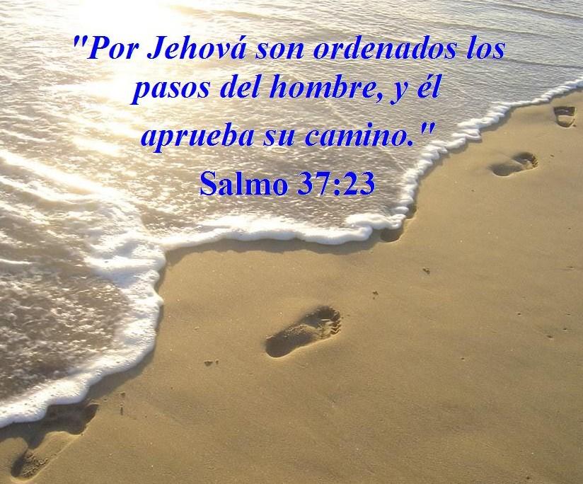 Por Jehov   Son Ordenados Los Pasos Del Hombre  Y   L Aprueba Su
