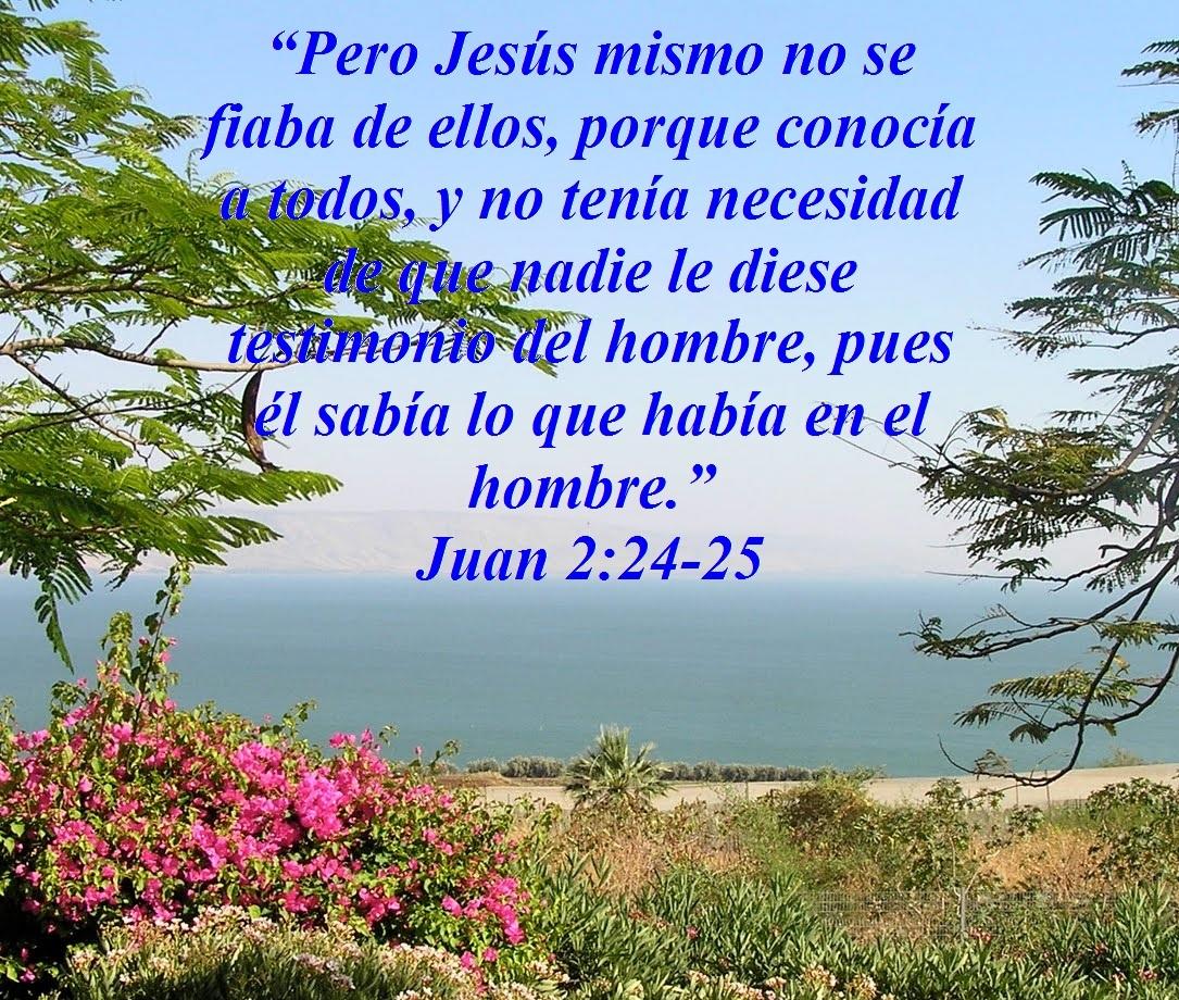 Jesús Enseña Acerca De Confiar En Personas Juan 2 24 25 Mission Venture Ministries En Español