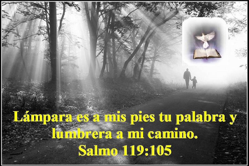Lámpara es a mis pies tu palabra y lumbrera a mi camino – Salmo 119 ...