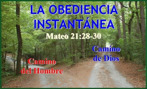 Obediencia - Mateo 21 vs 28-30