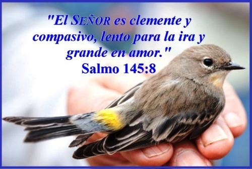 Salmo 145 vs 8 S