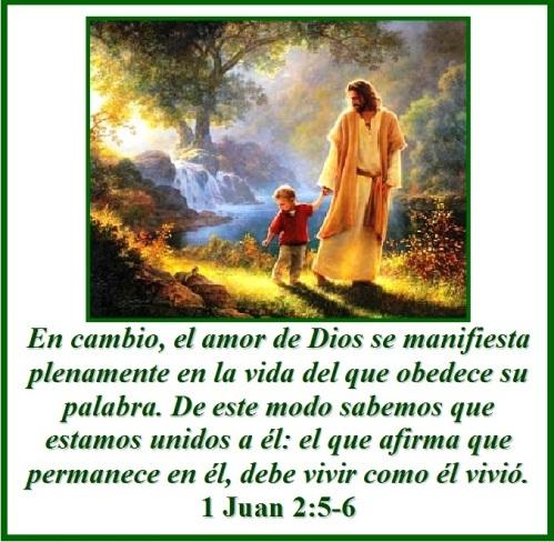 1 Juan 2