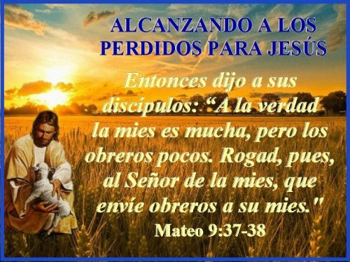 Mateo 9 vs 37-38
