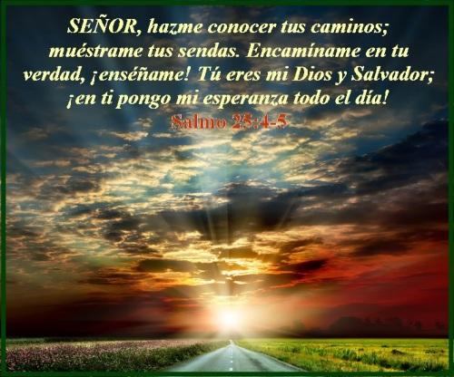 Salmo 25 vs 4-5 (S)