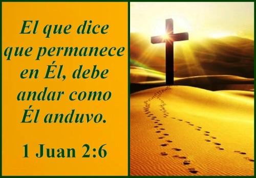 1 Juan 2 vs 6