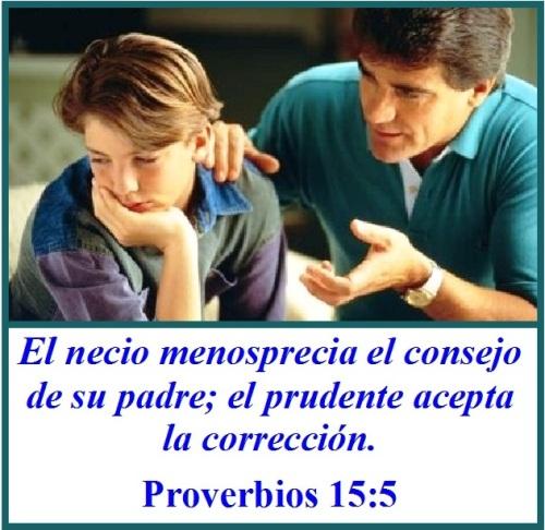 Proverbios 15 vs 5