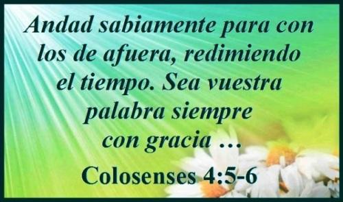 Colosense 4 (S)
