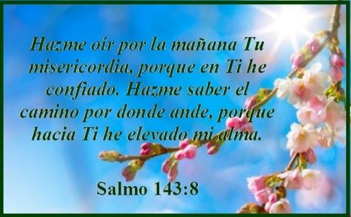 Salmo 143 vs 8 (S)