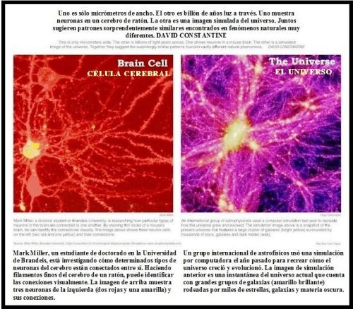 neuro-galaxy-in-spanish