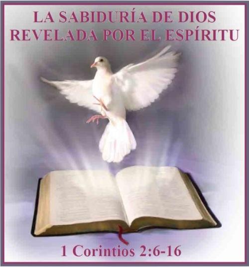 espiritu-santo-s