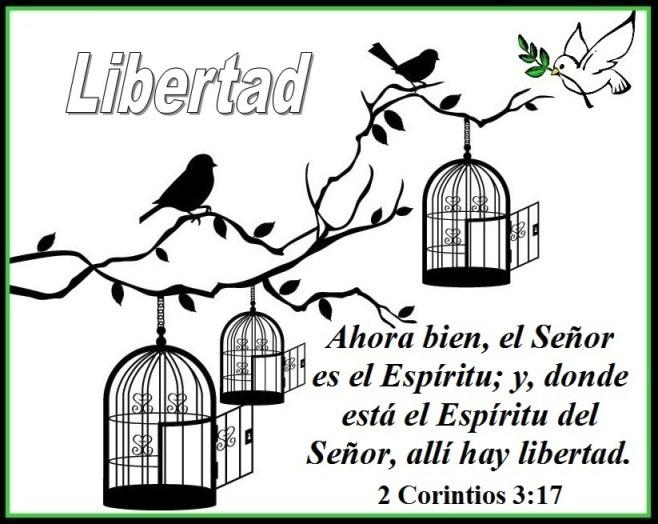 En Vez De Culpa Tenemos Libertad En Cristo 2 Corintios 3 17 Mission Venture Ministries En Espanol