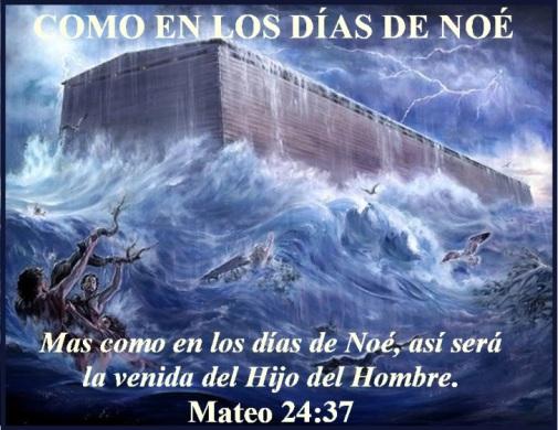 Mateo 24 vs 37